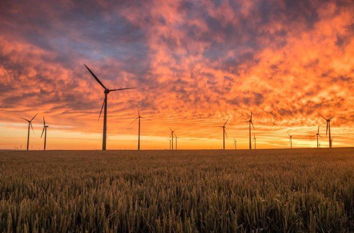 Verschiedene Projekte und Initiativen aus Sachsen stellten im Kraftwerk Mitte ihre Aktivitäten vor.