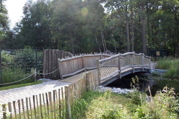 Digitalisierung, Sicherheit, Attraktivität: Schweriner Zoo investiert weiter in die Zukunft.